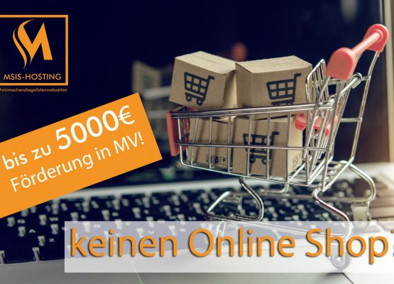 Bis zu 5000€ Förderung für Webseiten und Online Shops in Mecklenburg Vorpommern